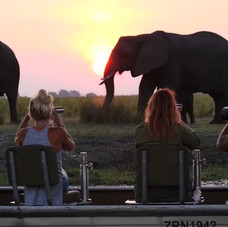 Chobe's great oppotunities to photograph some of the best of Africas wildlife.