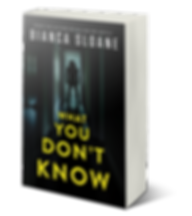 What You Don't Know - Adazing - 3D.png