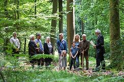 friedwald-bestattung_02.jpg