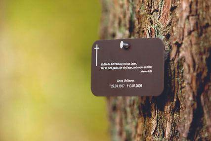 friedwald-namenstafel.jpg