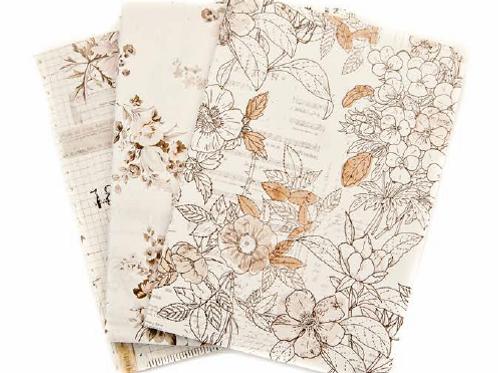 Pretty Pale PTJ Passport Notebook Inserts - Item #632960