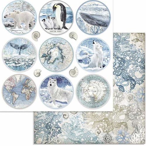 Stamperia-Arctic Antarctic Rounds- 2 - 12x12 Single Sheets