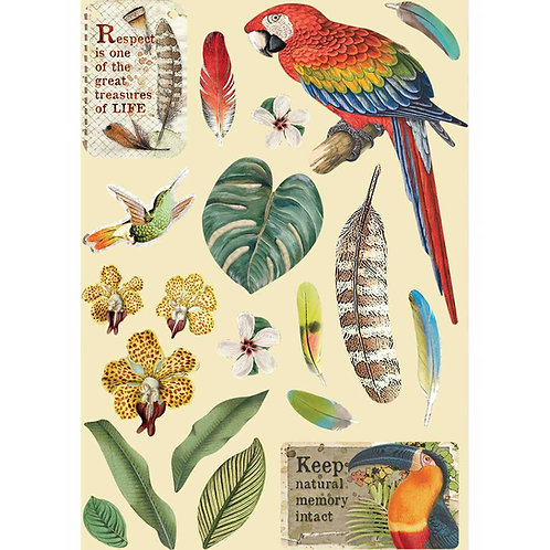 Stamperia - Amazonia - Parrot - Wooden Shapes