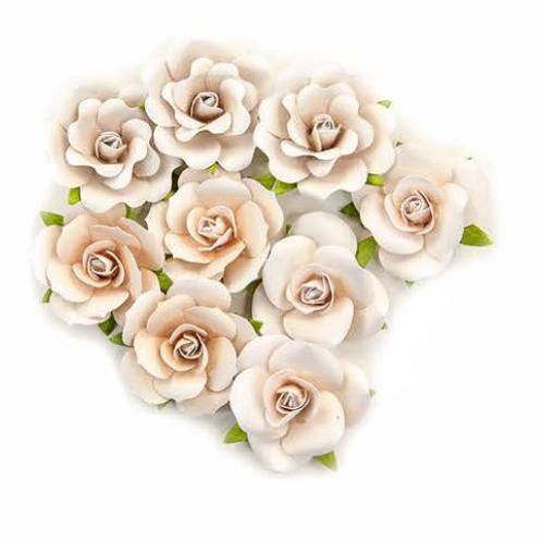 Pretty Pale Flowers - Dry Desert