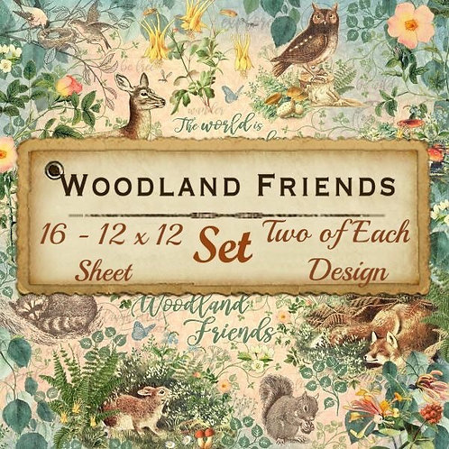 G45-Woodland Friends -16 Single 12x12 Double-Sided Sheets (No Cover)