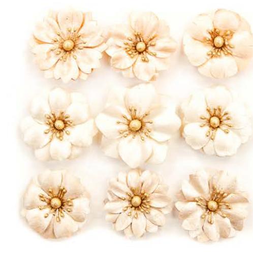 Prima - Pretty Pale Flowers - Barren