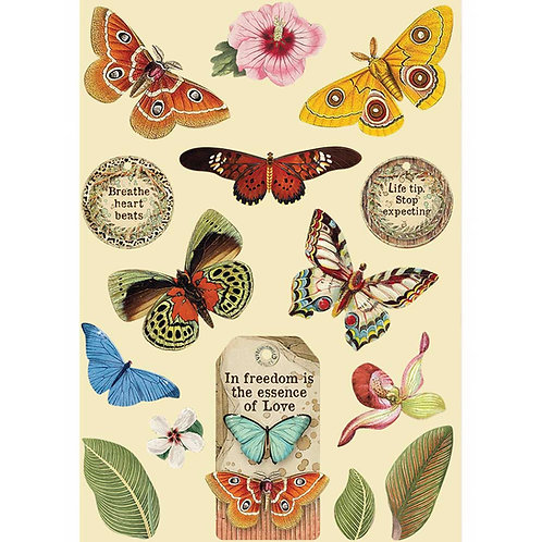 PRE ORDER - Stamperia - Amazonia - Butterflies - Wooden Shapes