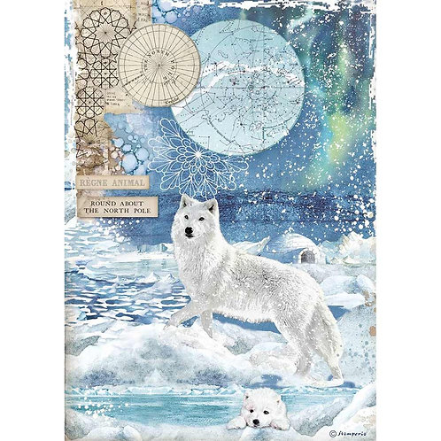 Stamperia - Arctic Antarctic Wolf - Rice Paper A4-Item #DFSA4480
