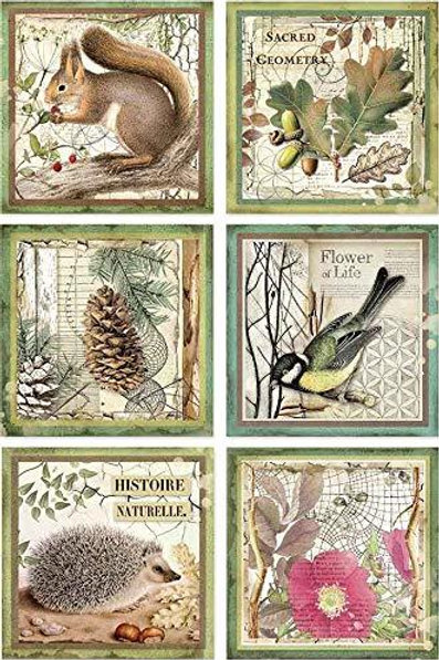 Stamperia - Forest Framed Animals- Rice Paper A4-Item #DFSA4425