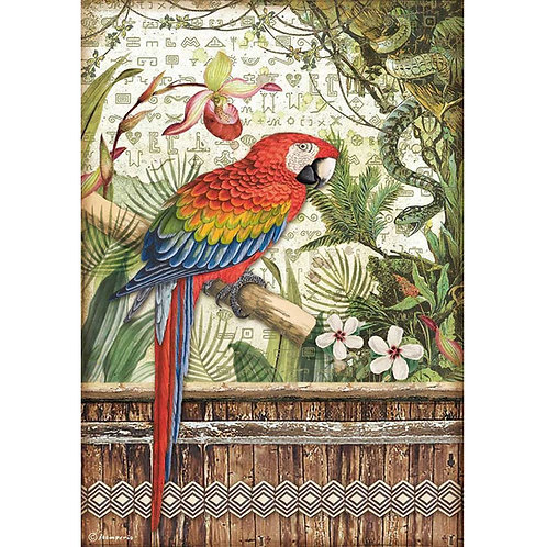 PRE ORDER - Stamperia - Amazonia - Parrot - Rice Paper A4