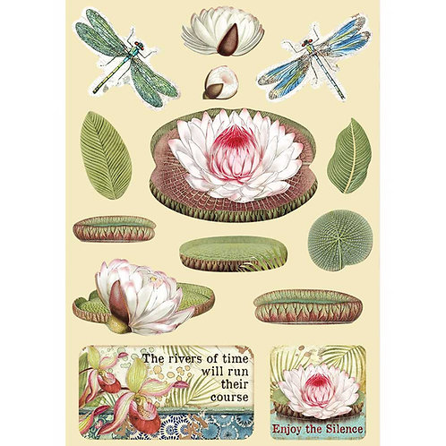 PRE ORDER - Stamperia - Amazonia - Water Lily - Wooden Shapes
