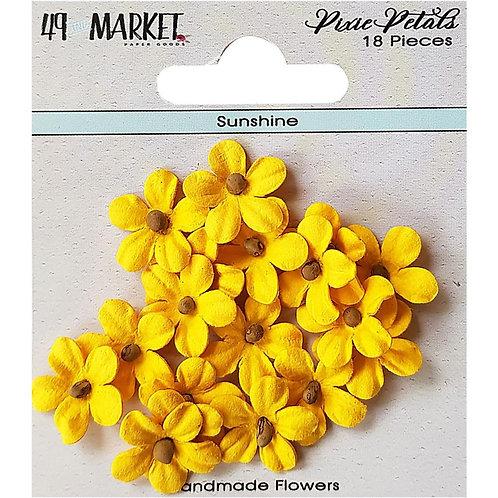 49 and Market-Pixie Petals-Sunshine