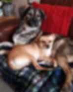 Calum and Suzie.jpg