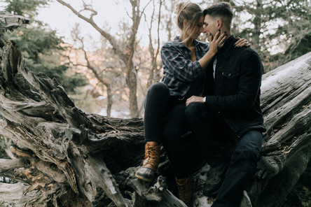 Couple takes a seat during their session on a fallen tree