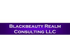 Blackbeauty Realm Consulting LLC SLW Log