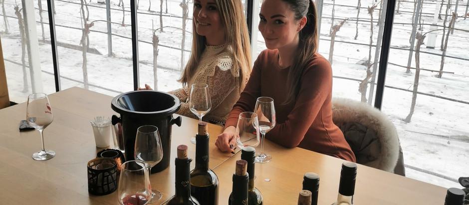 's Werelds eerste wijn gemaakt van druiven uit kas!