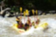 RM11.jpg