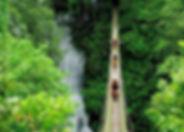 RM56.jpg