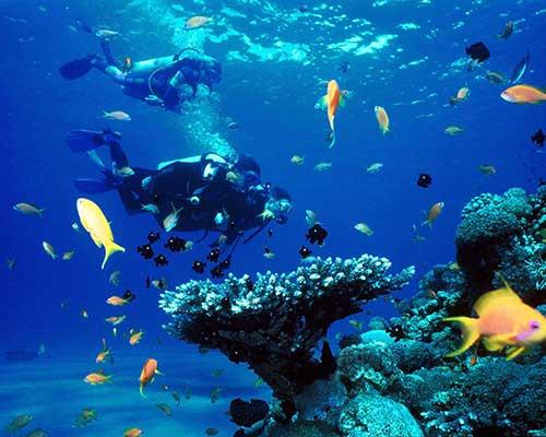 Isla del Caño.jpg