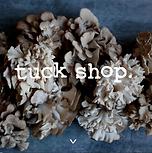 _Tuck_Shop.png