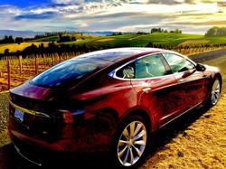 Tesla Touring to Domaine Drouhin