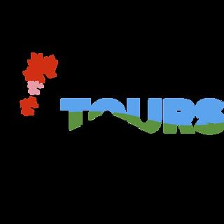 Tesla Tours Logo