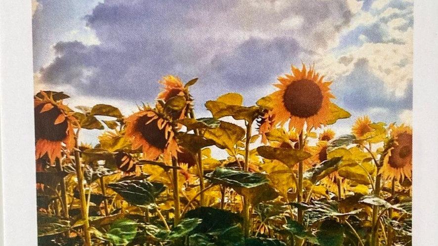 Postkarte sunflowers