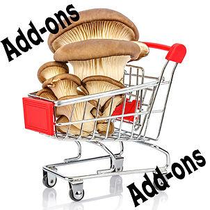 Addons.jpg