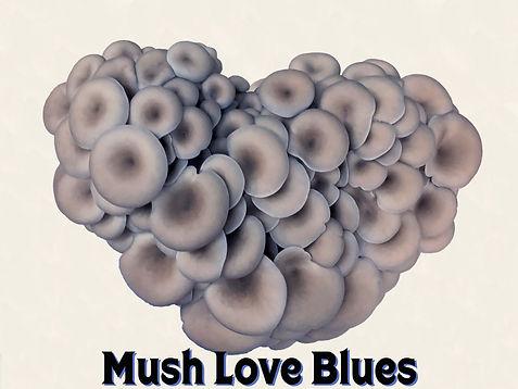 mush.love.blues.jpg