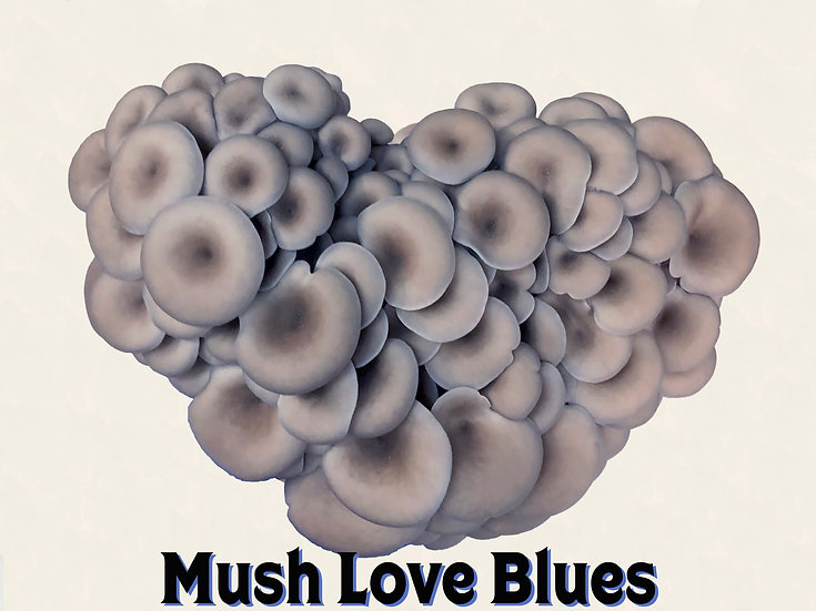 Mush Love Blues Subscription