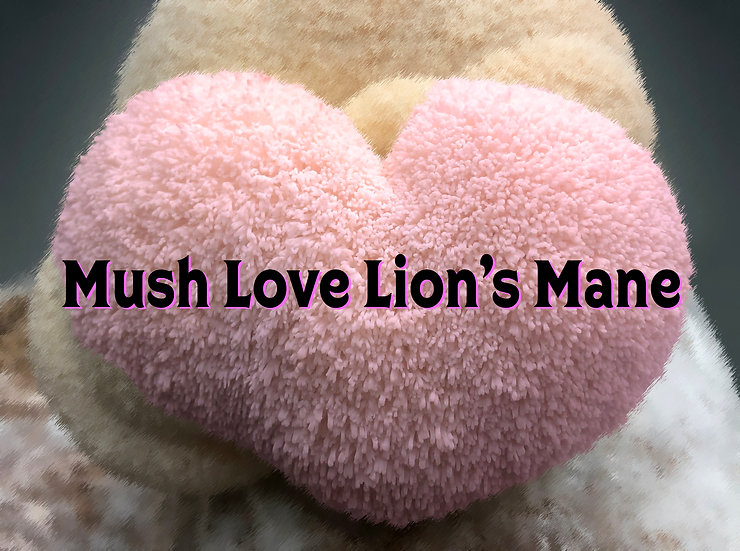 Mush Love Lion's Mane Subscription Gift