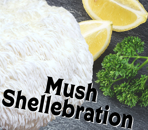 Mush Shellebration Subscription
