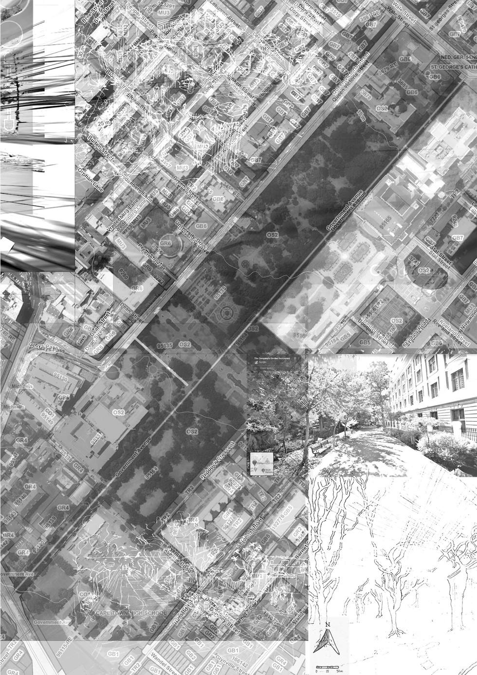 Land Use Compression of Company's Garden. Servant, AT. Unit 13. 2020.