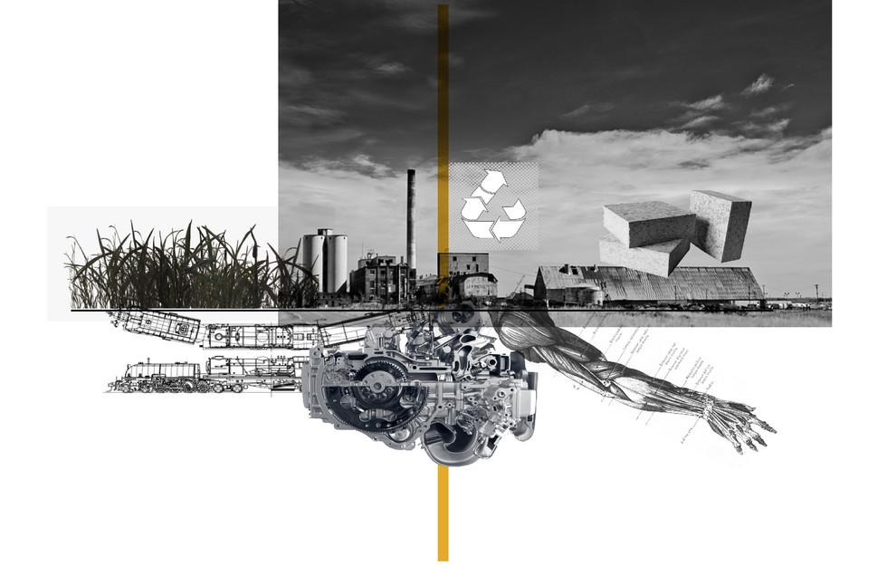 Upcycled Agriculture Waste. Bikitsha, E. Unit 17. 2020.