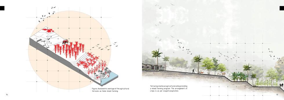 Agricultural Intervention Montage & Terraces. Duma, B. Unit 15X. 2020.