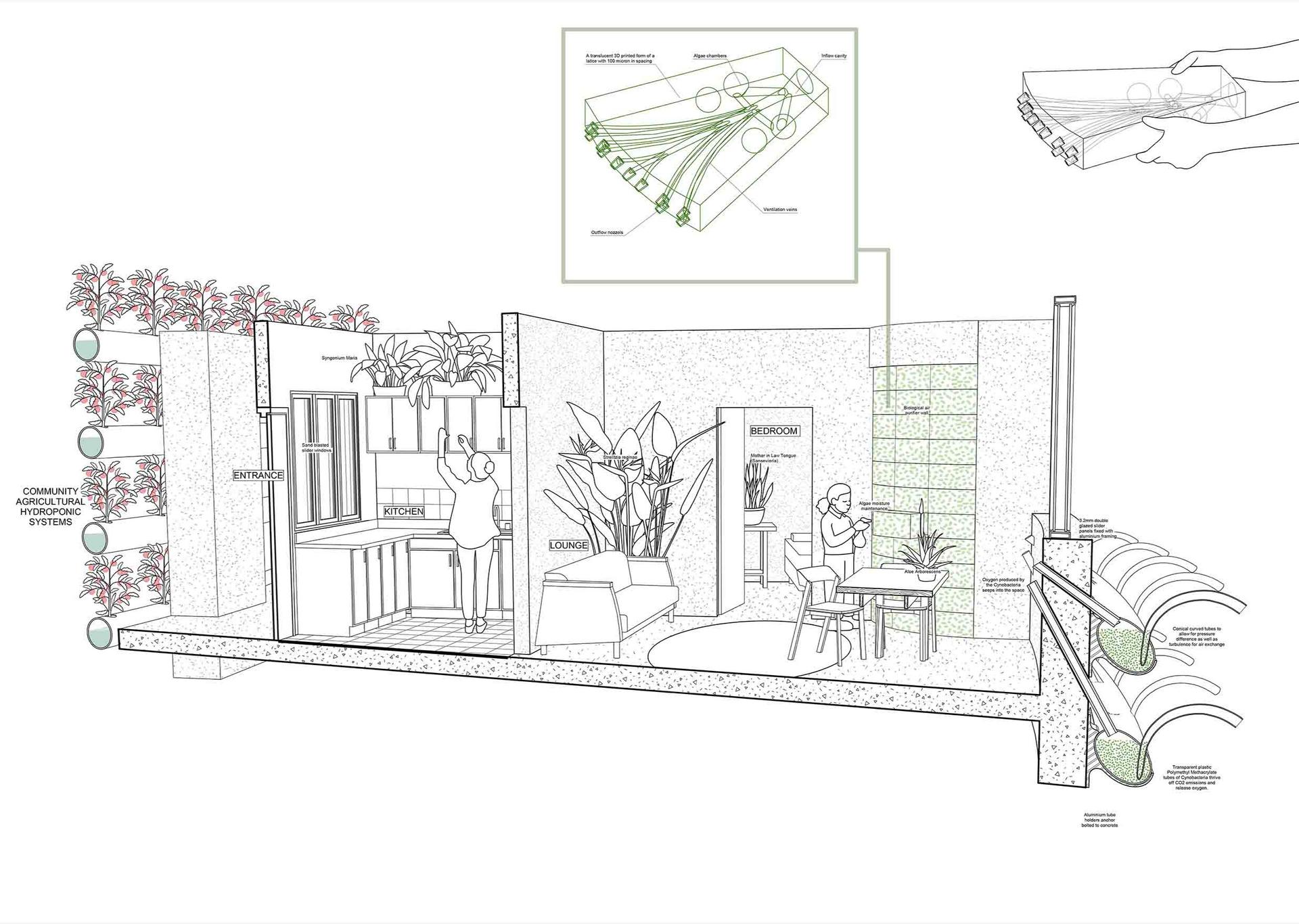 Apartment eye level section. Pottie, A. Unit 13. 2020.