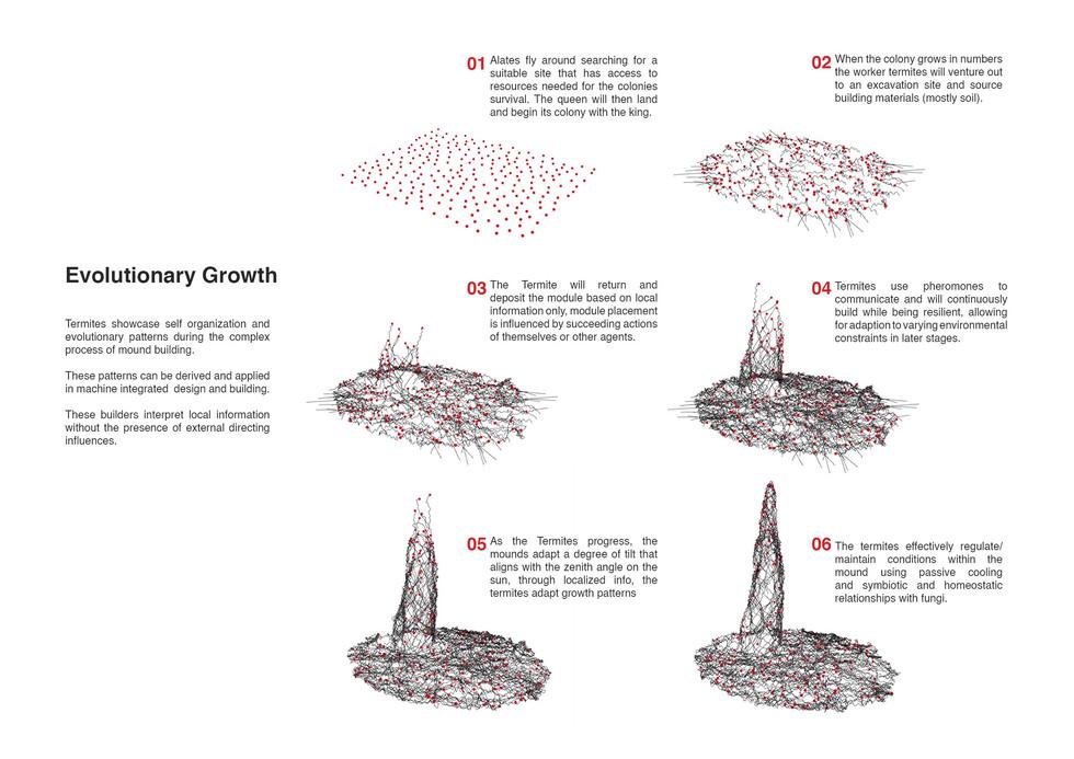 Evolutionary building patterns. Andonov, I. Unit 17. 2020.