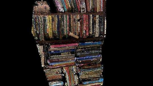 UNIT 12_BOOKS_3.png
