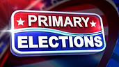 primary elections.png