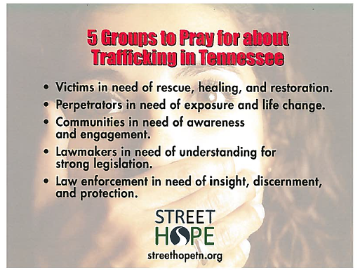 knoxville resources united states compassion coalition human  knoxville resources united states compassion coalition human trafficking focus essay
