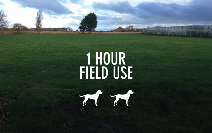 1 Hour Field Use