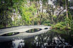 Audubon Swamp Reflection Bridge