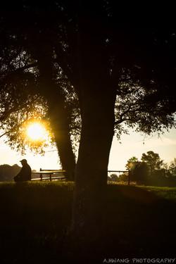 Early Morning Sunrise Annapolis