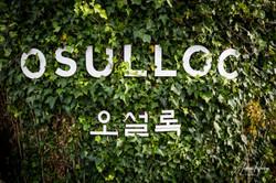 OSULLOC Tea Leaf Farm