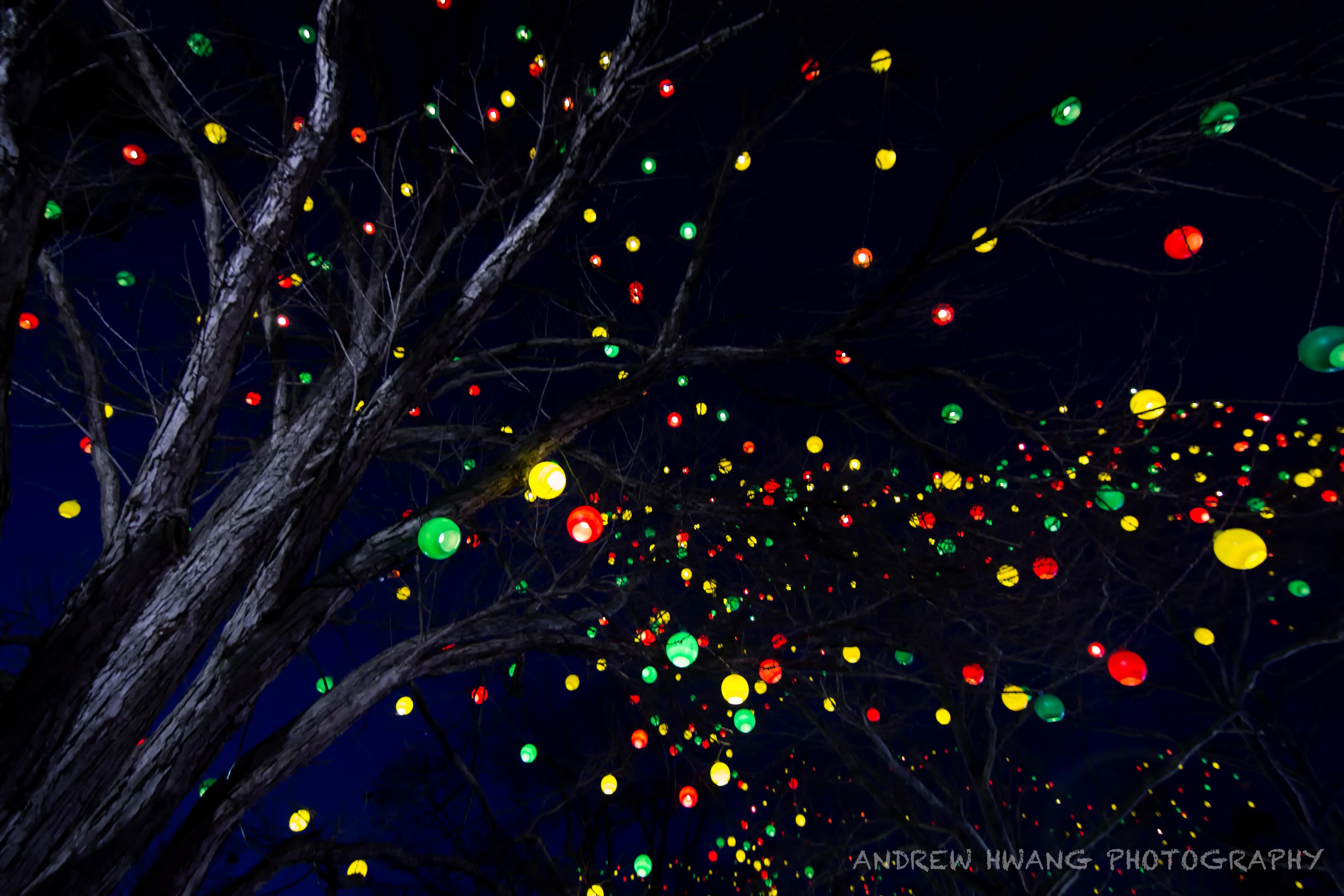 Hershey Park Lights
