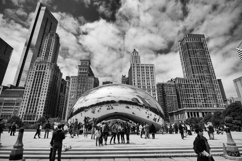 The Bean Chicago Skyline