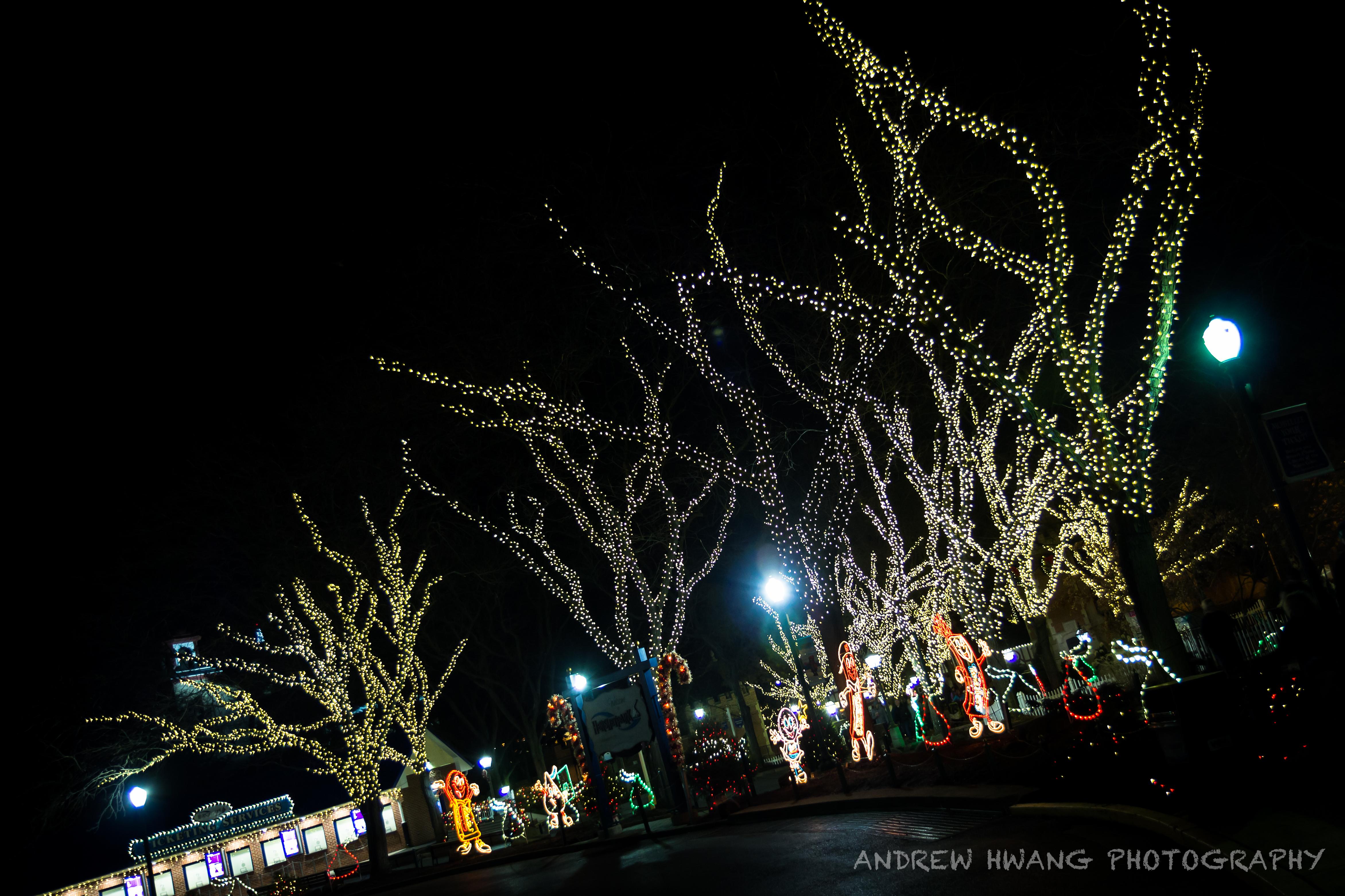 Hershey Lights