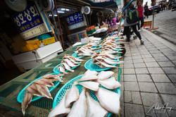 Fish at Jagalchi Market