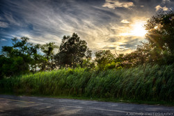 Road to Solomons Island 2