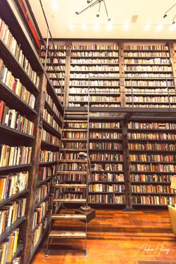 Stony Island Arts Bank Library Ladder